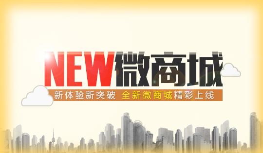 深圳电商系统开发