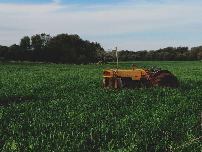 精准农业中的大数据和人工智能革命